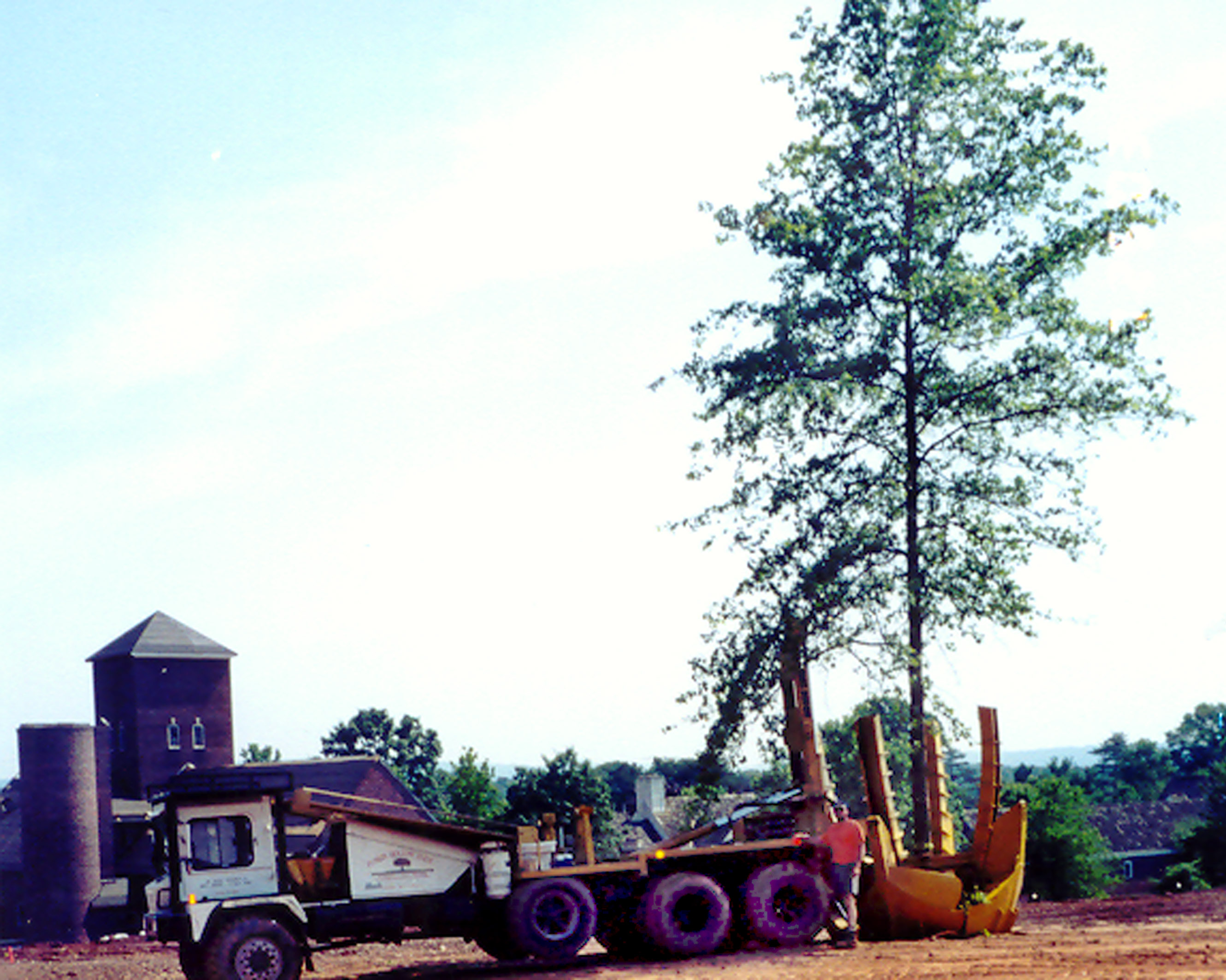 Tree Moving – Pun'kin Hollow Farms
